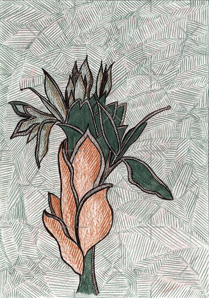 76 - PLANT DESIGN - DAVE EDWARDS - COLOURED PENCILS - 1998 by BLYTHART