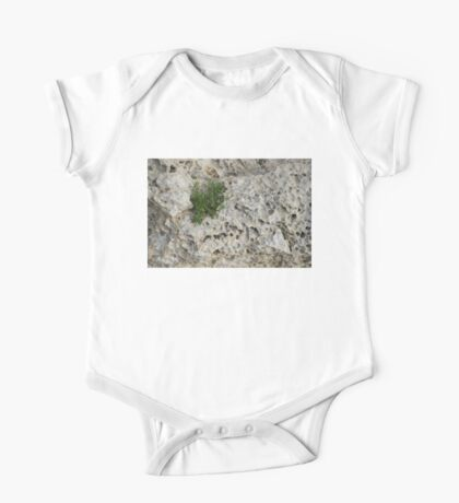 Life on Bare Rock - Pockmarked Limestone and Thyme  One Piece - Short Sleeve