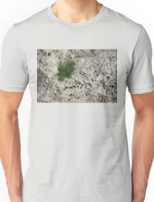 Life on Bare Rock - Pockmarked Limestone and Thyme  Unisex T-Shirt
