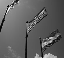Flags by photogenpix