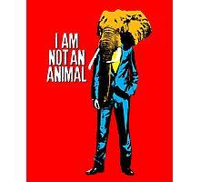 Elephant Man, I am not an animal Photographic Print