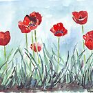 Poppies mean Spring! by Maree Clarkson