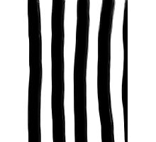 Black and White Paintbrush Stripes Photographic Print