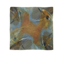 Designs Inspired By Nature: Wild Robin Scarf