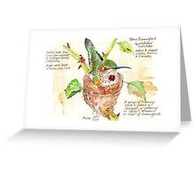 Phoebe, the Allen's Hummingbird Greeting Card