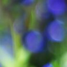 Purple bokeh- iPhone case by Jeananne  Martin