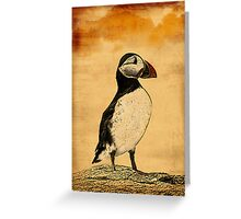 Puffin Print Greeting Card