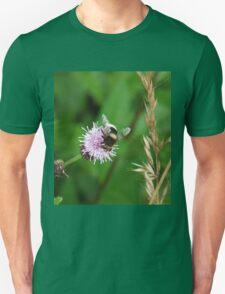 Bug Eyes T-Shirt