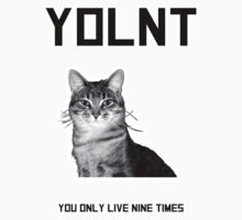 YOL9 You only live nine times! by Bearded Wonder Kid by Edwin Culling
