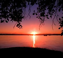 Redland Sunrise - Victoria Point Qld Australia by Beth  Wode