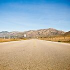 The Road by MSPhoto
