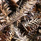 Textural Spike by DEB CAMERON