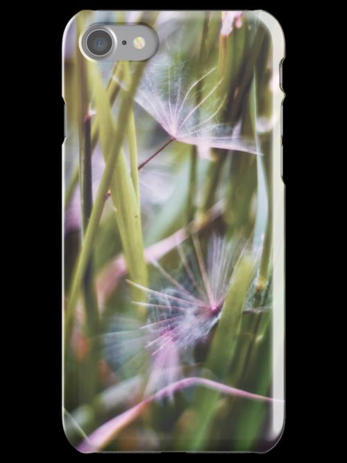 Dandelion Dreams by Vicki Field