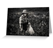 Herb Picker, Australia Greeting Card