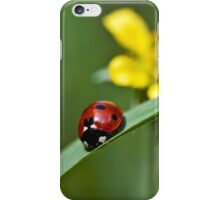 Ladybird on grass iPhone Case/Skin