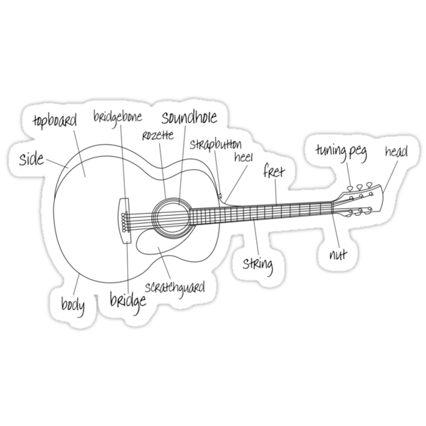 Guitar Anatomy by Nathan Smith