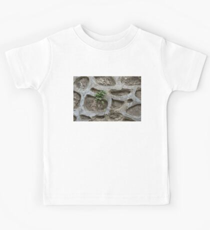Life on Bare Rock - Trailing Down the Old Masonry Wall Kids Tee