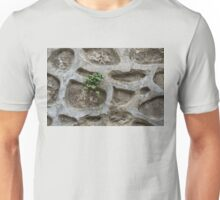 Life on Bare Rock - Trailing Down the Old Masonry Wall Unisex T-Shirt