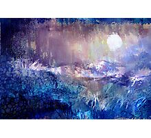 Moondance in the Night Garden Photographic Print