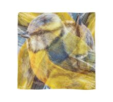 Designs Inspired By Nature: Blue Tit Scarf