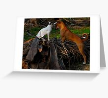 Blessings.... Greeting Card