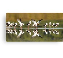 Banded stilts stretching Canvas Print