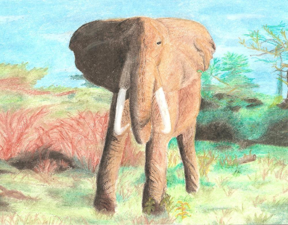 Elephant  by elizabethtarde