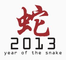 Year of The Snake 2013 T-Shirt by ChineseZodiac