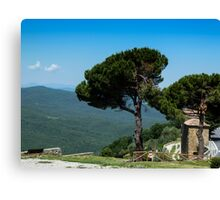A view from Montepulzino - Toscana Canvas Print