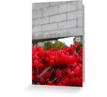 monument to peacekeepers Greeting Card