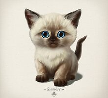 Cataclysm- Siamese Kitten Classic by Iker Paz Studio