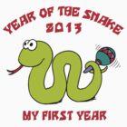 Born Year of The Snake 2013 T-Shirt by ChineseZodiac