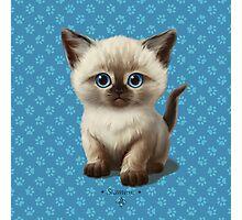 Cataclysm: Siamese Kitten Paws Photographic Print