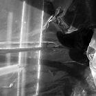 attic shadows by arthousecards