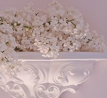 Lilac Purity On Ornate Shelf by Sandra Foster