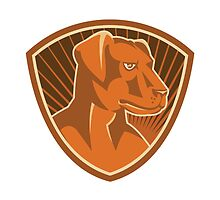 Sheepdog Border Collie Shield Retro by retrovectors