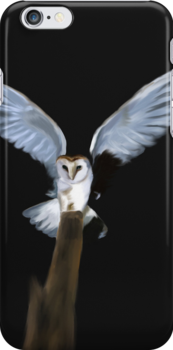 Barn Owl Landing by Stacy Parker