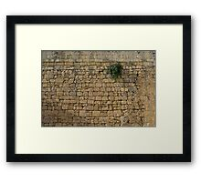 Life on Bare Rock - Up High on the Fortification Wall Framed Print