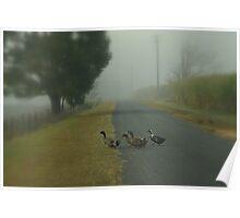 Foggy Morning Stroll Poster