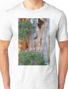 Bristlecone Pine Unisex T-Shirt
