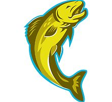 trout fish jumping retro by retrovectors
