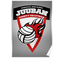 Juuban High Varsity Volleyball Posters Poster