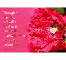I Will Trust in Him Photographic Print