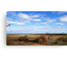 Farming countryside Canvas Print