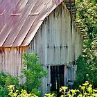 Delicately Faded Old Barn by Martha Sherman
