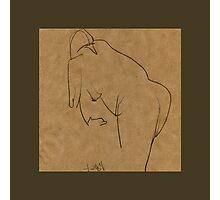 model№14 Photographic Print