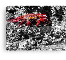 Oh Yeah!  I Dare You! Canvas Print