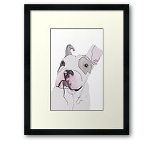 Puppy Is Not Impressed  Framed Print