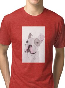Puppy Is Not Impressed  Tri-blend T-Shirt