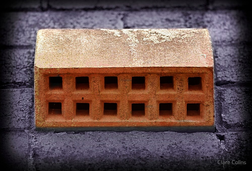 Just a strange old brick in a wall by Clare Colins